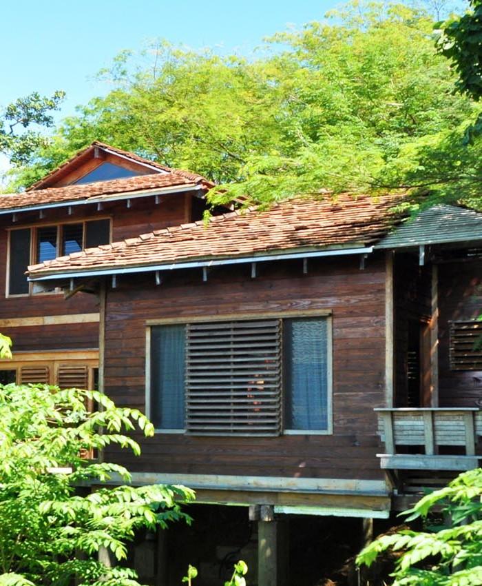Tree House Luxury Villa