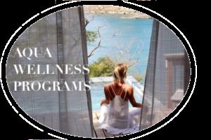 Aqua Wellness Programs